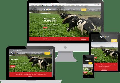 Website Agrotronic